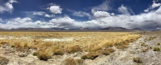 Puna de Atacama, Región de Atacama